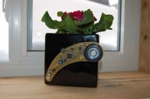 Plant Whisperer parla con le vostre piante