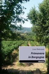 Primavera in Borgogna - di Luca Terenzoni