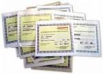 Assicurazioni temporanee più costose