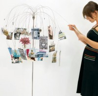 portafotografie a forma di albero