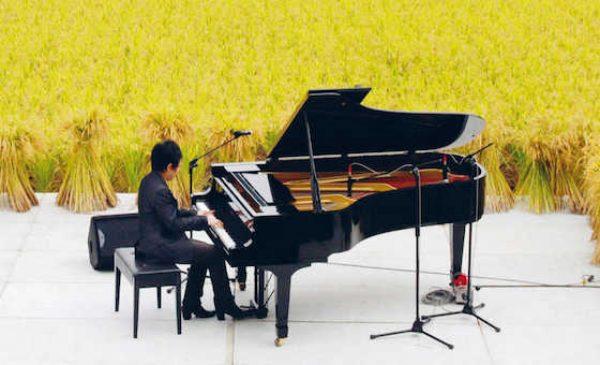 La sinfonia delle cose mute di Bruno Pedretti