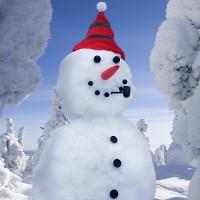 accessori pupazzo neve
