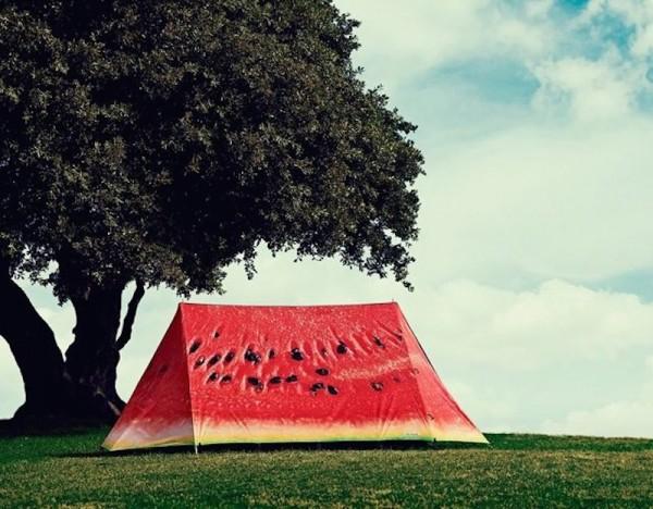 Tenda da campeggio design anguria