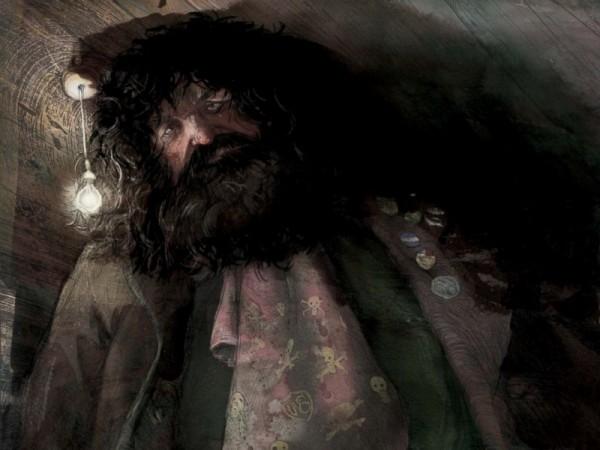 illustrazioni harry potter