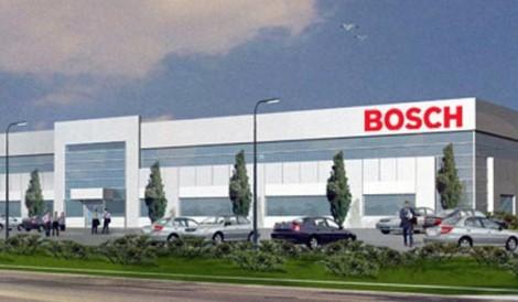 Bosch stage diplomati