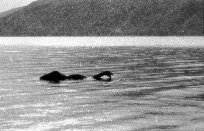 Misteriosi animali dei Laghi