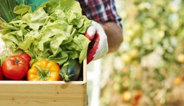 Agroalimentare boom 2015