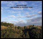 Una somma di piccole cose il nuovo album di Niccolò Fabi
