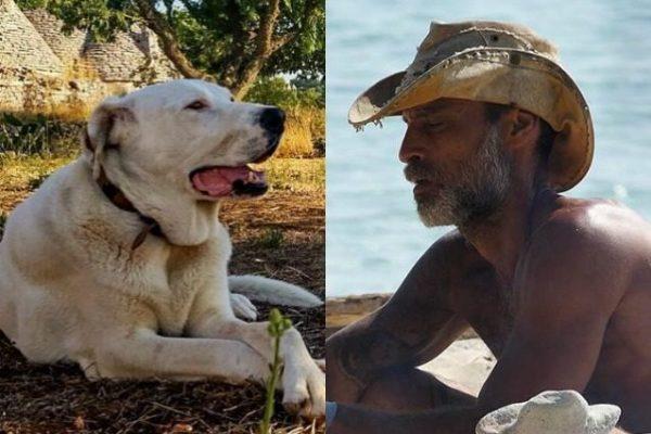 Isola dei Famosi 2017: il dramma di Raz Degan